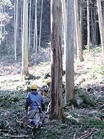 職人歴34年の木材のエキスパート竹中氏。山での見立てから伐採、製材などより良い木材づくりに余念がない。